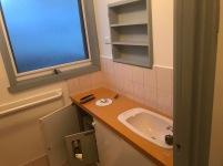 Before the renovation - original bathroom